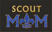 Picture for category Scout Mom